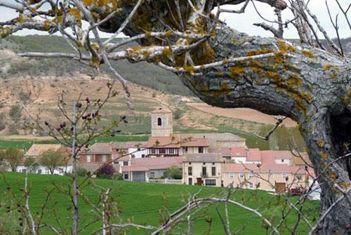 Mambrilla de Castrejón - Casa Azul de la Ribera
